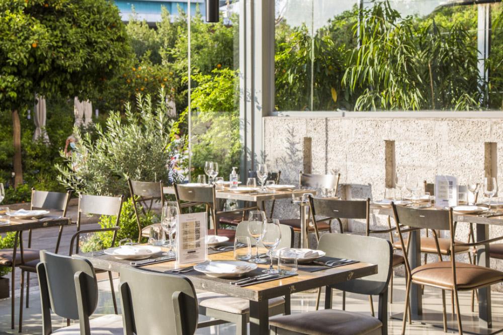 Βασίλαινας  - Βραβεία Ελληνικής Κουζίνας